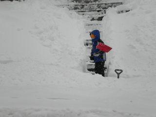 Blizzard Feb 2010 038