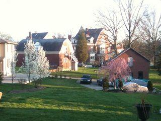 Spring night backyard